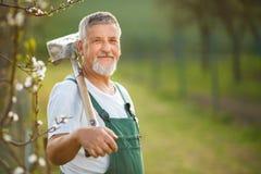 Portrait of a handsome senior man gardening in his garden Stock Image
