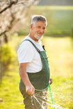 Portrait of a handsome senior man gardening in his garden Royalty Free Stock Image