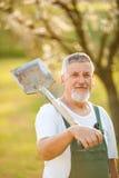 Portrait of a handsome senior man gardening in his garden Stock Photography
