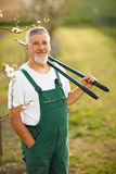 Portrait of a handsome senior man gardening in his garden Stock Photo