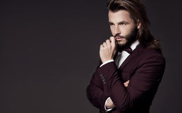 Portrait of handsome stylish man in elegant suit royalty free stock photos