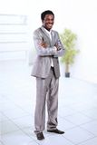 Portrait of a handsome successful business man. Busy working Royalty Free Stock Image
