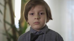 Portrait of a handsome successful little boy tying a tie. Children as adults. Adult child. stock video