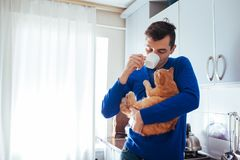 Portrait of handsome young man holding cat and drinking tea on the kitchen. Portrait of handsome young man holding cat on the kitchen stock photography