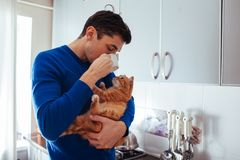 Portrait of handsome young man holding cat and drinking tea on the kitchen. royalty free stock photo