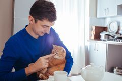 Portrait of handsome young man playing with cat in the kitchen royalty free stock photography