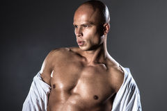 Portrait of hansome bald man. Stock Image