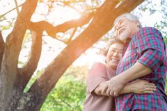 Portrait happiness older couple. Charming grandfather and grandmother is embracing each other with love and smiley faces in a park stock images