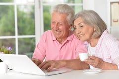 Happy beautiful senior couple using laptop. Portrait of happy beautiful senior couple using laptop at home Royalty Free Stock Image