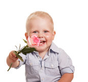Portrait happy boy in bright striped shirt, holding rose isolated. Portrait of a happy boy in bright striped shirt, holding a rose isolated on a white background Royalty Free Stock Images