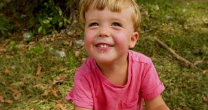 Portrait of a happy boy in the park. Curious children with blond hair stock video footage