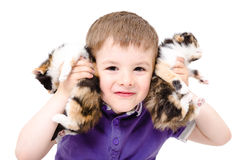 Portrait of a happy boy playing with kittens Royalty Free Stock Images