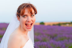 Portrait of a happy bride in lavender field Royalty Free Stock Photos