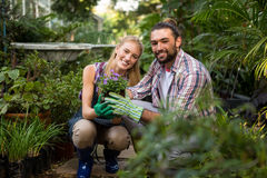 Portrait of happy colleagues holding potted plants at garden Royalty Free Stock Photography