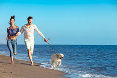 Portrait of a happy couple with dogs at the beach Stock Images
