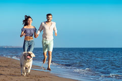 Portrait of a happy couple with dogs at the beach Stock Image