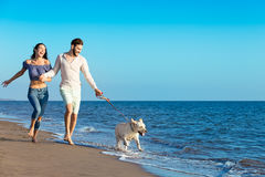 Portrait of a happy couple with dogs at the beach Royalty Free Stock Photo