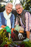 Portrait of happy couple gardeners with produce in farm. Portrait of happy mature couple gardeners with fresh produce in farm Royalty Free Stock Images