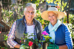 Portrait of happy couple holding potted plants at garden stock photos