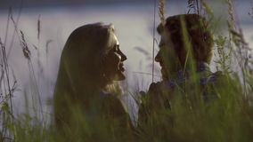 Portrait of happy couple on a meadow smiling and kissing stock video footage