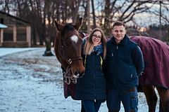 Portrait of a happy couple near to a brown horse on the ranch on a winter day. Portrait of an attractive couple near to a brown horse on the ranch on a winter stock images
