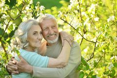 Happy couple posing in park Stock Photos