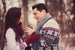 Portrait of happy couples Stock Photos