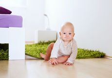 Portrait of a happy cute baby child at home interior. Royalty Free Stock Image