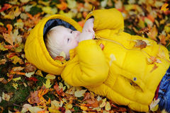 Portrait of happy cute toddler boy with autumn leaves background Stock Photo