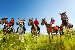 Portrait of happy equestrians riding their horses. Portrait of five happy equestrians with their horses, standing in a row in flowery meadow Royalty Free Stock Image