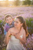Portrait of happy family consisting of cute son and beautiful mother Royalty Free Stock Photography