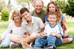 Portrait of happy family of five. Smiling at camera, relaxing in park Stock Images