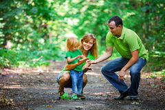 Portrait of Happy Family In Park Stock Photo