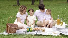Portrait of a happy family on a picnic on a sunny summer day.  stock video