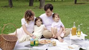 Portrait of a happy family on a picnic on a sunny summer day.  stock video footage