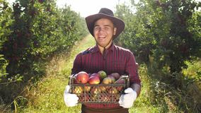 Portrait of happy farmer in hat standing at apple garden