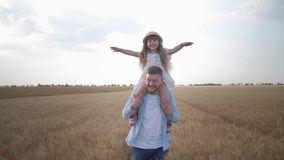 Portrait of happy fatherhood, young cheerful father runs with his little cute daughter on shoulders that shakes her. Hands in wheat grain reaped field at crop stock video