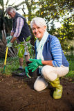 Portrait of happy female gardener with potted plant at garden stock image