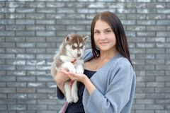 Portrait of happy female strolling with her pet at leisure with copy space stock photos