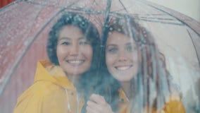 Portrait of happy friends wearing raincoats standing under umbrella outdoors. Portrait of happy friends beautiful young women wearing raincoats standing under stock video