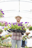 Portrait of happy gardener holding flower pots in crate at greenhouse Stock Image