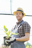Portrait of happy gardener holding potted plant at greenhouse Stock Photography