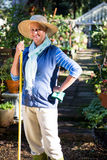 Portrait of happy gardener standing with tool at garden royalty free stock images