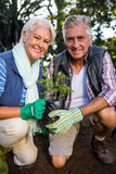 Portrait of happy gardeners holding potted plant at garden Royalty Free Stock Images
