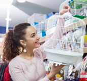 Portrait of happy girl choosing bird cage Stock Photography