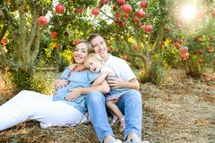 Portrait of happy husbent and pregnant wife with cute baby girl daughter having rest and fun in the pomegrate fruit garden. Family royalty free stock photos