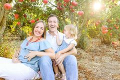 Portrait of happy husbent and pregnant wife with cute baby girl daughter having rest and fun in the pomegrate fruit garden. Family royalty free stock photography