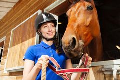 Jockey girl putting halter on her bay horse muzzle royalty free stock photography