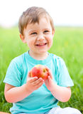 Portrait of a happy little boy with apple Stock Photos