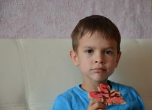 Portrait of a happy little boy holding a christmas cookie royalty free stock image